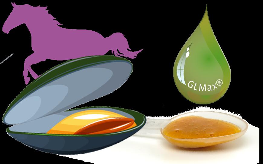 GLMax Groenlipmossel